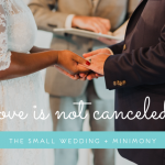 Love is Not Canceled | The Small Wedding and Minimony